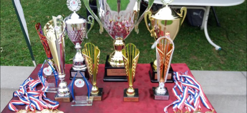 Olten Cricket Club Festival Champions 2017